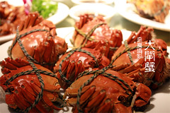 What a photo shot in China? Fastfood and Crab