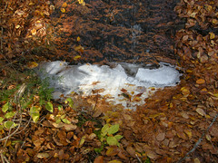 Small puddle at base of falls. Why is it bubbling?