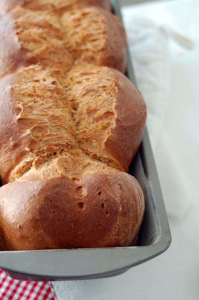 Whole Wheat Milk Bread with Raisins