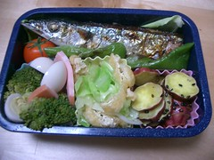 (skamegu) Tags: food fish rice broccoli bento japanesefood      kumara bentos   pacificsaury