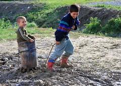 Ben-hur-like chariot in the mud (Omnishots.) Tags: children mud transylvania chariot malancrav