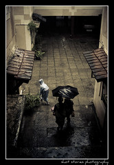 (varun2911) Tags: school boy wet rain umbrella d50 50mm kid nikon uniform apartment parent monsoon chennai raincoat