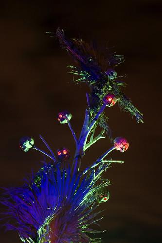 JungleRot - scarecrow tree