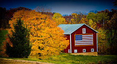 Election Day (Loren Zemlicka) Tags: november autumn red usa inspiration tree fall colors leaves wisconsin barn rural america canon landscape election midwest paint farm flag country patriotic foliage 5d patriot agriculture vote patriotism 2008 f8 starsandstripes 200mm farmstead canoneos5d flickrexplore greencounty canonef70200mmf4lisusm portalwisconsinorgselected lorenzemlicka portalwisconsin110408