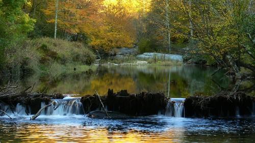 Fall Dam