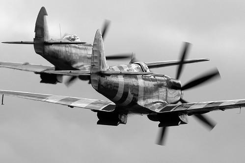 Warbird picture - Spitfires