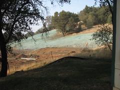 November 2008 hydroseeded hillside