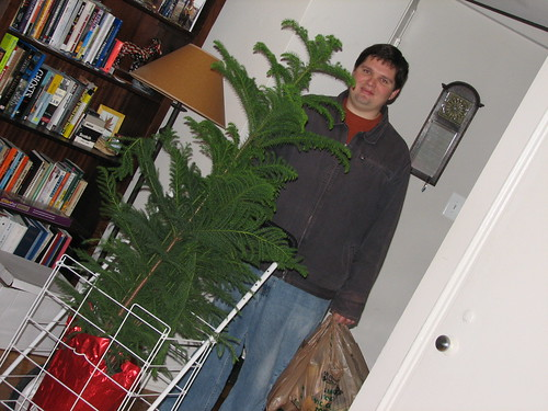 grant brings home a tree