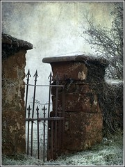 WinterGate (dingerthetwinger) Tags: old morning winter gate country frosty olympus tyrone 410 oldgate cookstown ardtrea