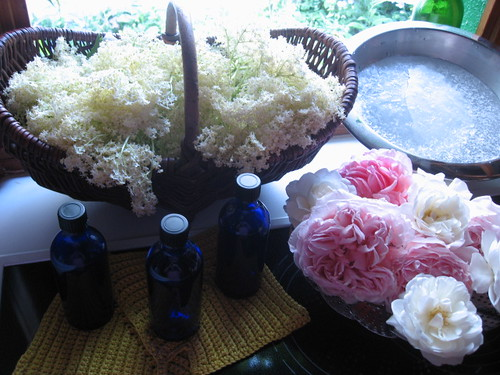 Für Rosen- und Holunderblütenhydrolat