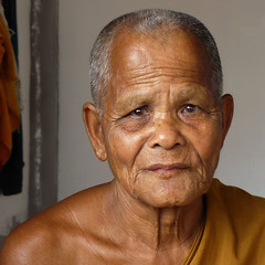 Portrait of a Lao Monk (Bn) Tags: tattoo topf50 nirvana monk laos enlightenment enlightened buddhistmonks theravada 50faves lifeispain  aplusphoto brownblueeyes teachingsofthebuddha meditativelife buddhisminlaos spiritalpractise monkattemple portraitofalaomonk laomonk