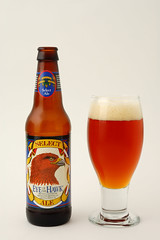 Mendocino Eye of the Hawk Ale
