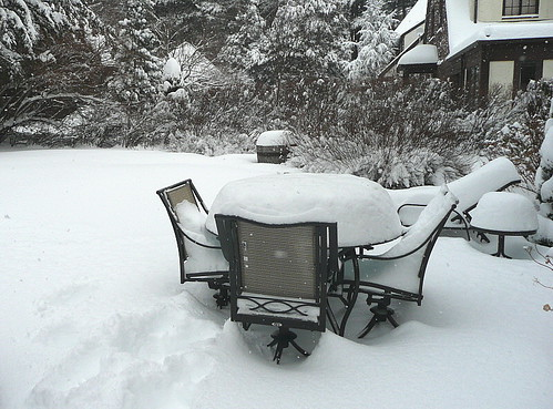 Snowy table, 2008