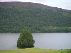 DSCN1857 (Zingraff) Tags: scotland glen dunkeld quaich