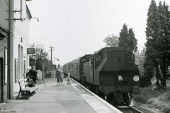 41287 arriving at Slinfold with the 1208 Horsham to Guildford 29 May 1965 (pondhopper1) Tags: blackandwhite white black steam railways 262t uksteam