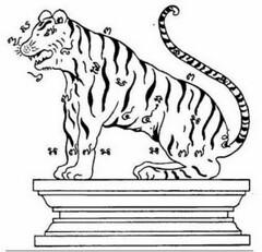 ยันต์พญาเสือ