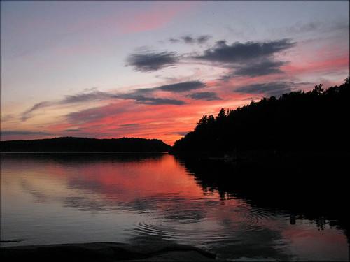 Swedish evening