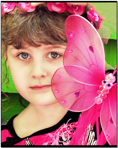 The Princess and The Butterfly