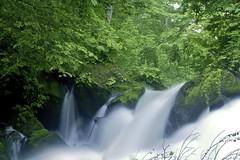 Waterfall @ Oirase (joka2000) Tags: tree green rock waterfall moss stream slowshutter oirase abigfave