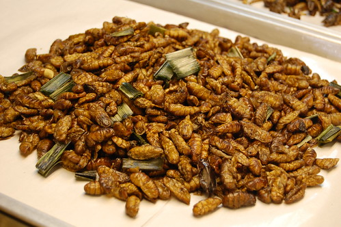 Fried Silkworm Pupae