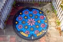 Iizuka City Manhole Cover (Bracus Triticum) Tags: flowers urban flower japan spring cover april 日本 manhole fukuoka 2008 cosmos kyushu 九州 福岡 iizuka 飯塚市