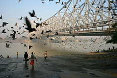a bridge and the birds | Kolkata (arnabchat) Tags: bridge people india water birds river flying pigeons explore plus kolkata bengal calcutta bangla westbengal howrahbridge hooghly ghaat arnabchat worldtrekker arnabchatterjee