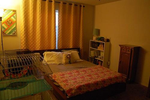OMG My room is clean!