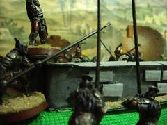 defendiendo Rohan (David Callejo) Tags: warhammer anillos seor