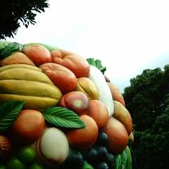 【写真】ミニデジで撮影したフルーツ・ツリー