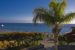 Beach #1 (michaelgrohe) Tags: ocean sea vacation costa holiday beach island meer kanaren canarias atlantic tenerife teneriffa riu inseln adeje