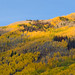 Mountains in Beaver Creek, Colorado