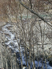 Creek in the mountain (pattyjn) Tags: mountain chang bai