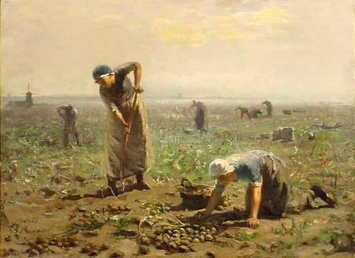 """Workers in the Fields With Tulips"""