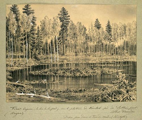 012- El lago de la Selva- Arizona