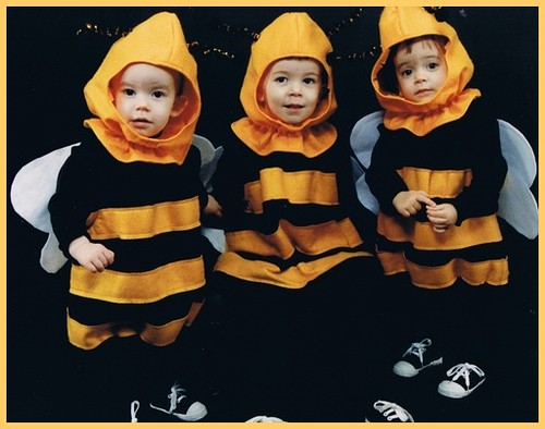 Bees1992