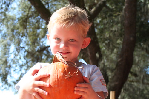 Noah picking our pumpkin