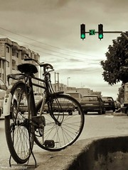 Hesitation (~/Moein\~) Tags: green bicycle persian iran free persia explore stop mazandaran 40 iranian crossroad avenue crossroads moein shahi    hesitation  aliabad     qaemshahr  moeinmohammadnejad       babolave