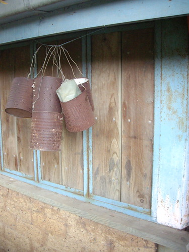 rusty tins hanging out