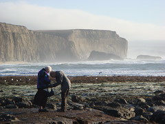 MartinsBeach_2007-026 (Martins Beach, California, United States) Photo
