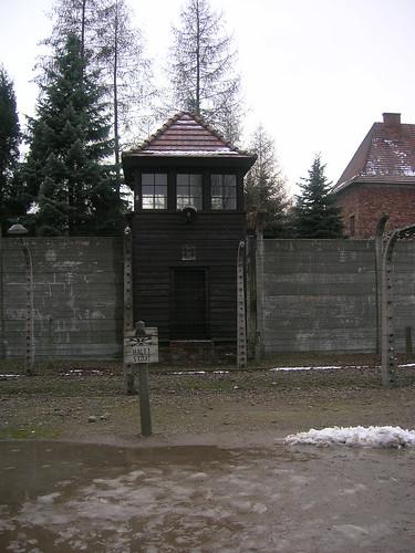 AUSCHWITZ (III)