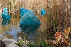 """""""Blue Polyvitro Crystals 2008"""" (Daniel Greene) Tags: autumn sculpture chihuly art water glass leaves reflections pond installation desertbotanicalgarden thenatureofglass azwchihuly"""