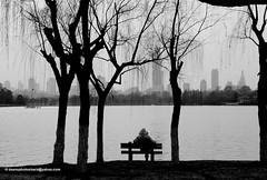 Breathe! (Dean's Photo Shack) Tags: china park urban blackandwhite bw reflection skyline contrast bench rust peace view zwartwit peaceful rest serene meditation uitzicht nanjing bankje reflectie stilte meditatie xuanwulake platinumheartaward platinumbestshot platinumpeaceaward deansphotoshack