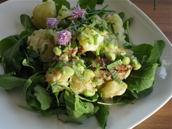 arugula smashed potato salad herbs 005