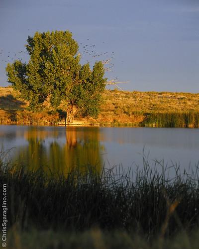 Colorado Eastern Plains