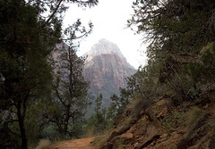 832101_Emerald_Pools_Trail.jpg (dr.dave.00@sbcglobal.net) Tags: park nation trails pools zion emeral