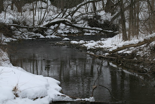Creek at Rock Cut State Park