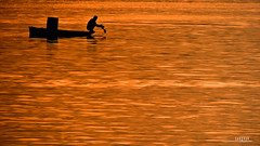: the last catch (audiOscience!) Tags: sunset water silhouette golden bay fishing fisherman asia dusk philippines canoe manila southeast luzon banca ccp canonpowershots3is audioscience sangoyo litratistakami christianlucassangoyo