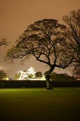 九州の自然・風景