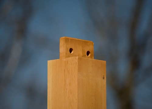 Tenon on Post Sans Beam