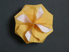 Rabbit-ear octagonal tato-box top
